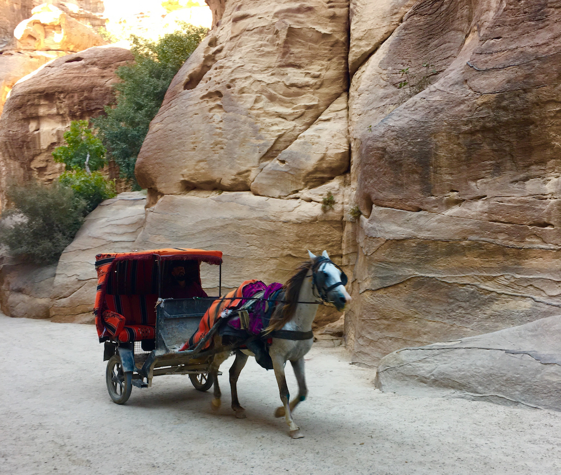 Horse carts for hire. Tips for visiting Petra in Jordan.