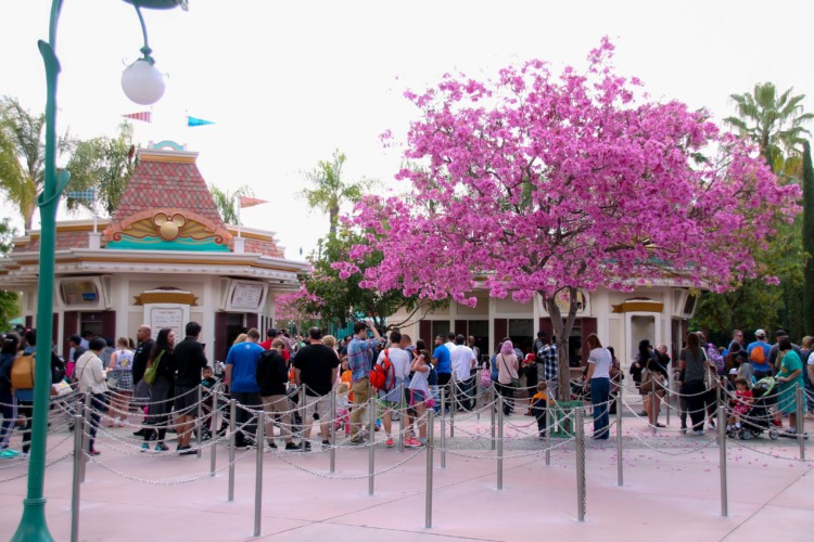 The Disneyland ticket price increase may cost you nothing!