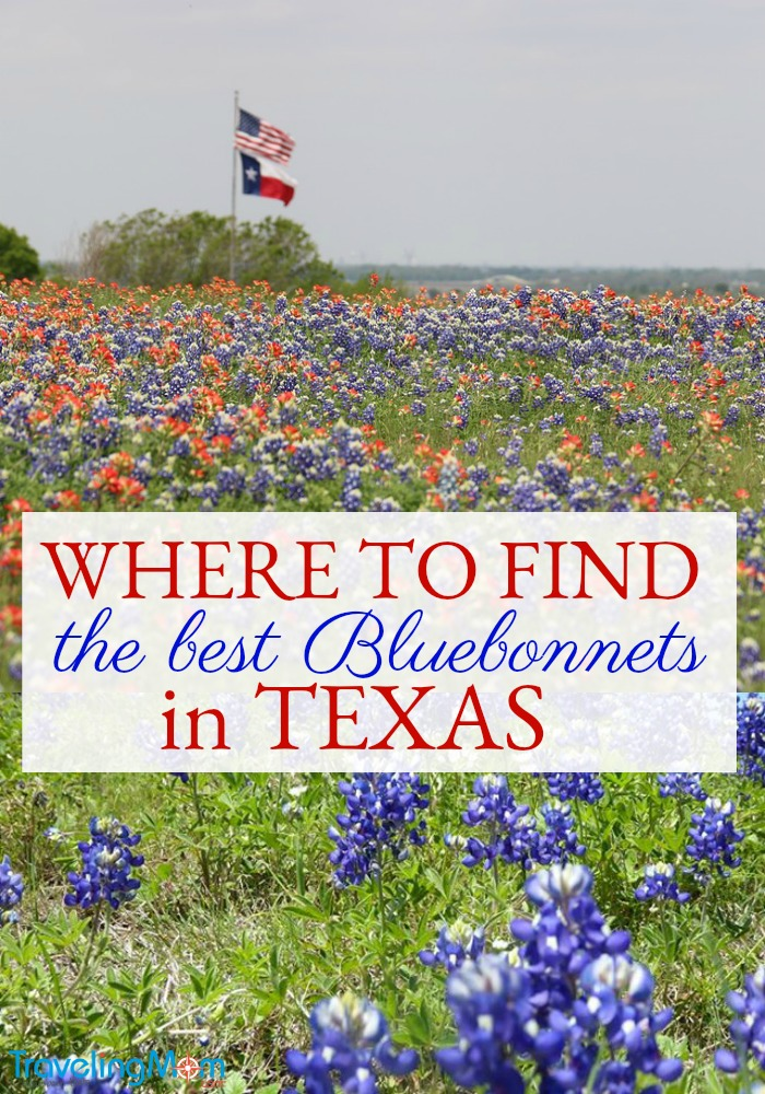 If you're looking for info on where to see Texas Bluebonnets, Traveling Mom has you covered!