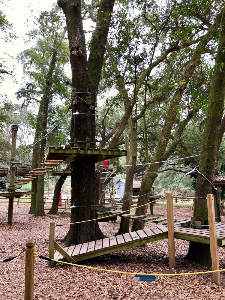 The ropes course and zip line are two of the favorites at the kid-friendly Tallahassee Museum.