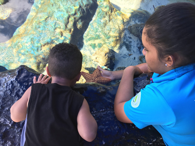 The Interactive Aquarium in cancun, Mexico is great for hands-on fun!
