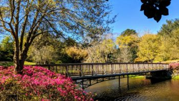 Things to do in Mobile Alabama - Bellingrath Gardens