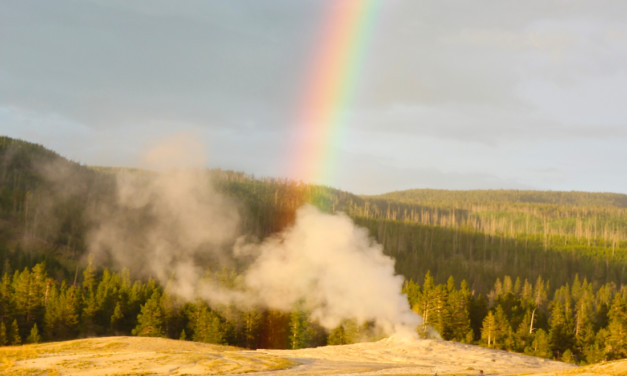 The Family Guide to Old Faithful in Yellowstone