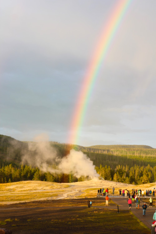 Old Faithful Geyser. Ultimate Guide to Yellowstone National Park.