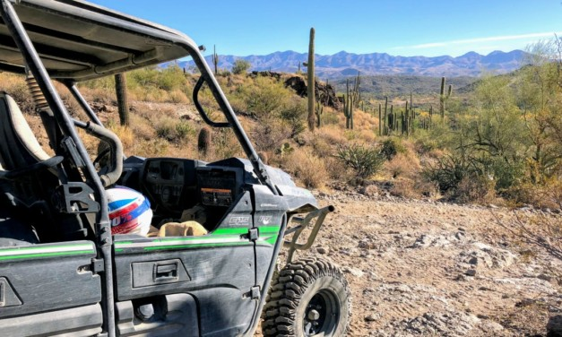7 Fun Things to Do in Phoenix Arizona