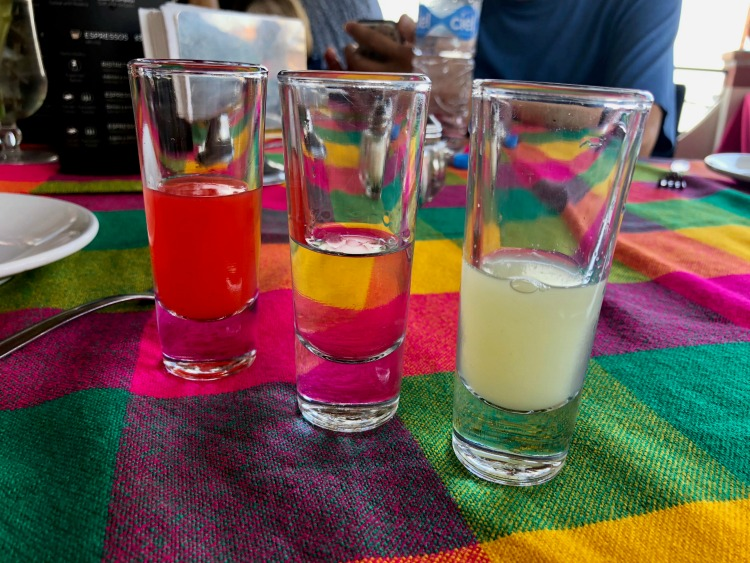 Vallarta Food Tours showed us the proper way of drinking tequila with a shot of lime juice preceding the tequila and a chaser to remove the aftertaste at the ending.
