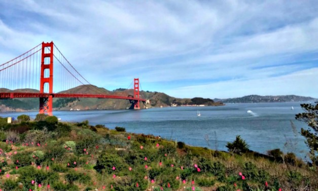 Food and Fun: San Francisco Family Adventures