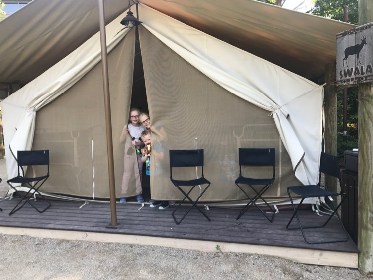 at the Cincinnati Zoo, three kids peek out of a tent before an overnight at the zoo