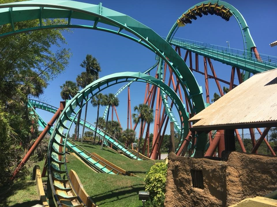 Roller coaster loops at Busch Gardens Tampa which offers military discounts near Orlando