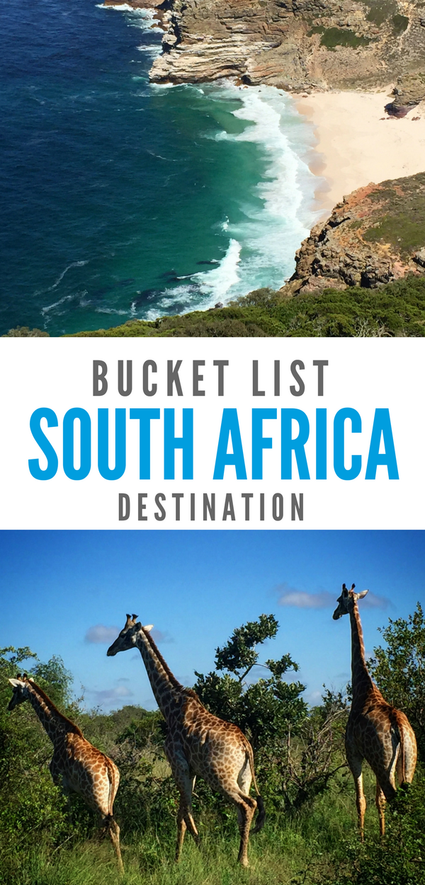 Wild animals on safari, natural beauty, and inspiring recent history all put South Africa on the bucket list.