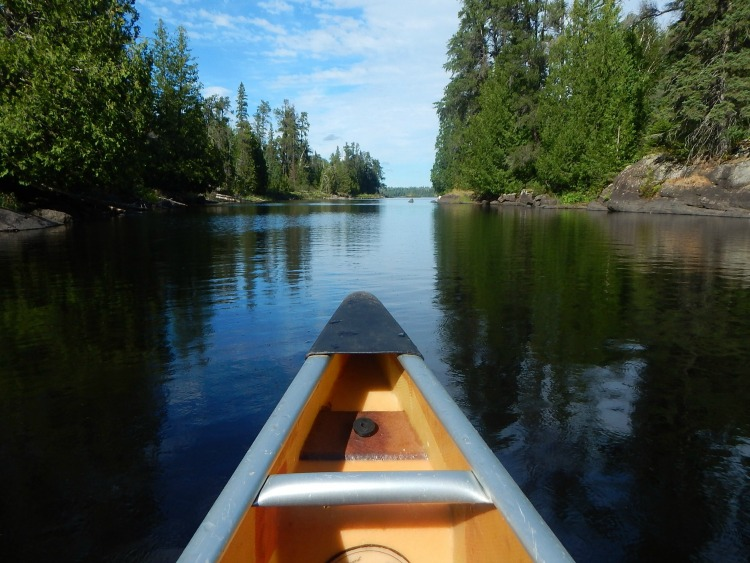 Canoeing, one of the best things to in Quetico, a Canada national park