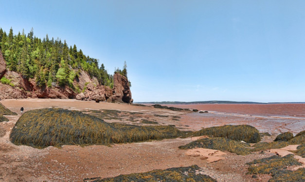 9 Best Things to do with Kids at the Bay of Fundy, New Brunswick