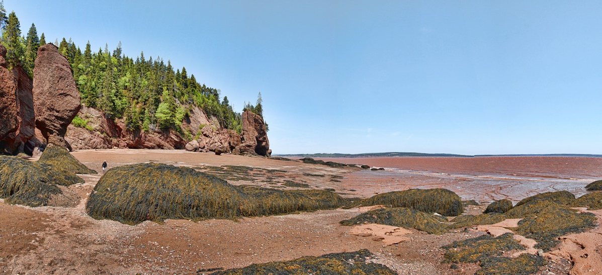 Best things to do with kids at the Bay of Fundy national park