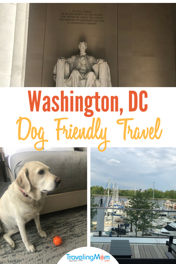 Bring the pup #dogfriendly #travel to #WashingtonDC is easy