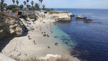 La Jolla Beach is one of the best beaches in Southern California for families.