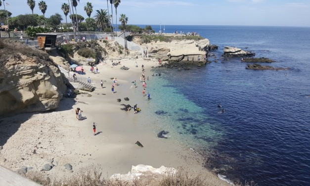 Discover One of the Best Beaches in Southern California for Families