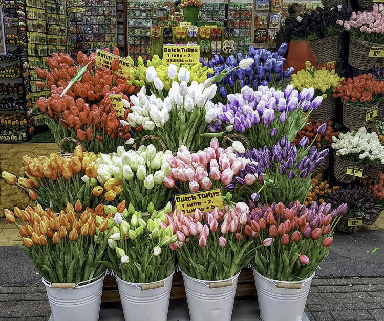 How to visit Amsterdam in two days. Beautiful tulips at Amsterdam's market.
