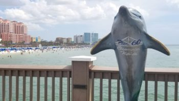 7 Family Friendly Things To Do in Clearwater FL