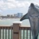 View of Clearwater Beach from Pier 60