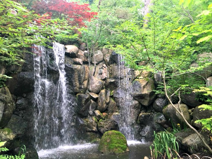 Add Anderson Japanese Gardens to your list of fun summer things to do in Rockford IL