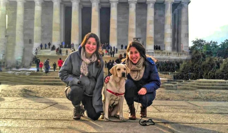 Have you explored dog friendly DC?