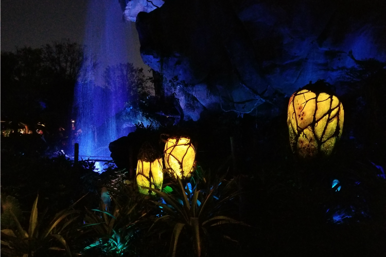 Pandora waterfall in Animal Kingdom at night