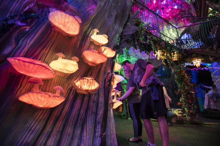 Make sure you add Meow Wolf to your list of things to do in Santa Fe with kids
