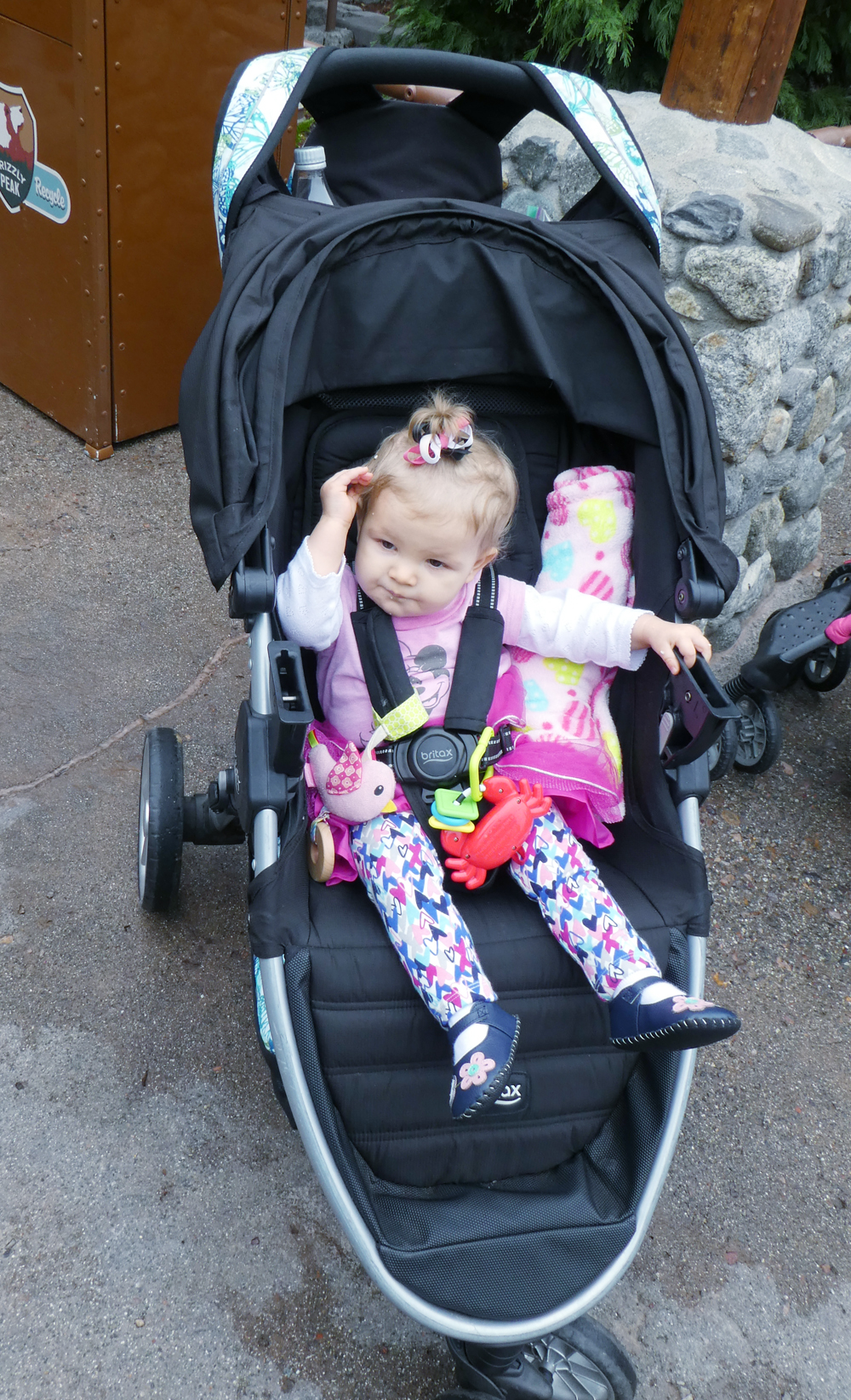 Tips for Strollers at Disney: Bring Your Own or Rent There?