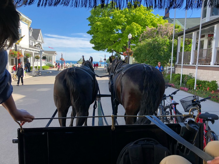 One of the cool things to do in Northern Michigan is to take a tour of beautiful Mackinac Island.