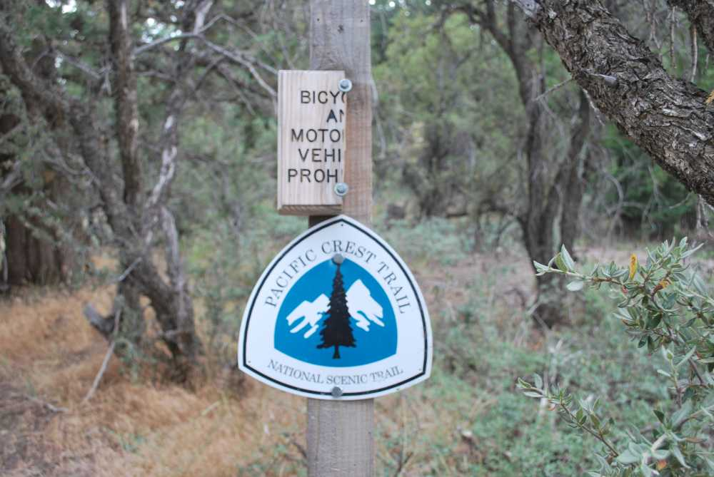 Hiking the pacific crest trail is among the 7 things to do in Big Bear in summer.