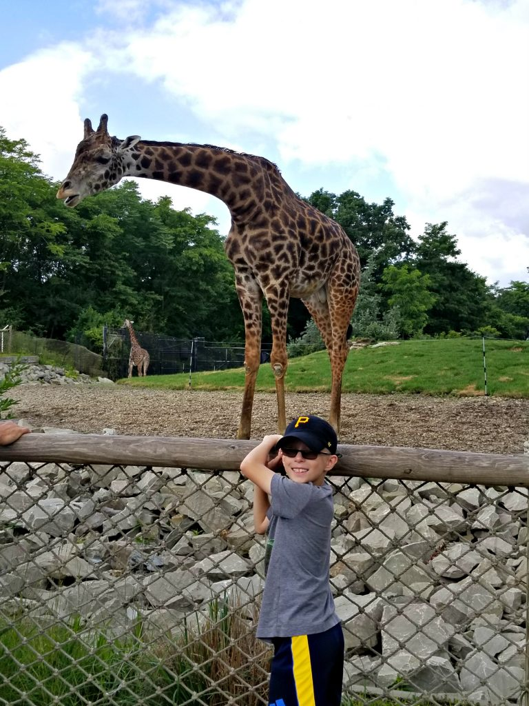 Boy and giraffe at the Pittsburgh Zoo
