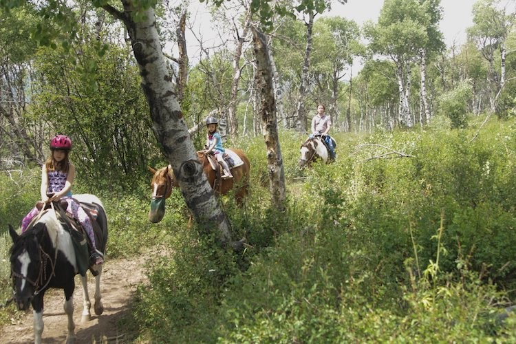 Things to do in Steamboats Springs in the summer - go horseback riding