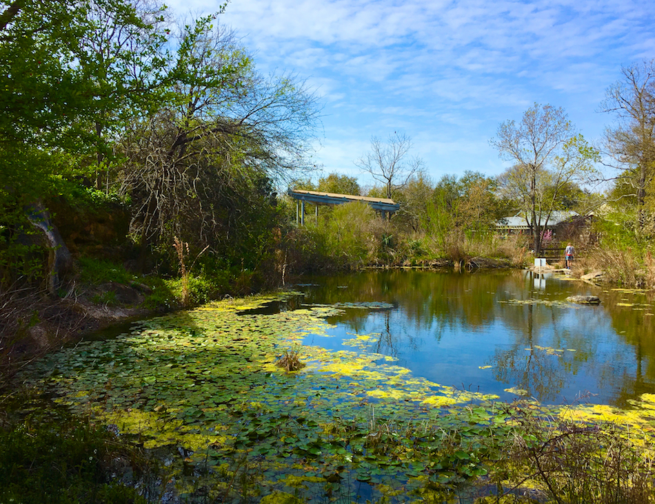 Austin Nature Center, 3 day itinerary for Austin Texas