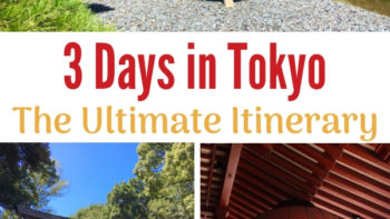 Get help with planning your trip to Tokyo. Packed with Japanese gardens, museums, temples and shrines. #Tokyo #TMOM #FamilyTravel