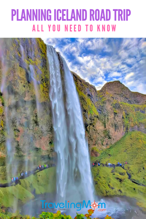 Planning a road trip to Iceland can be tricky. Learn all you need to know before you go.