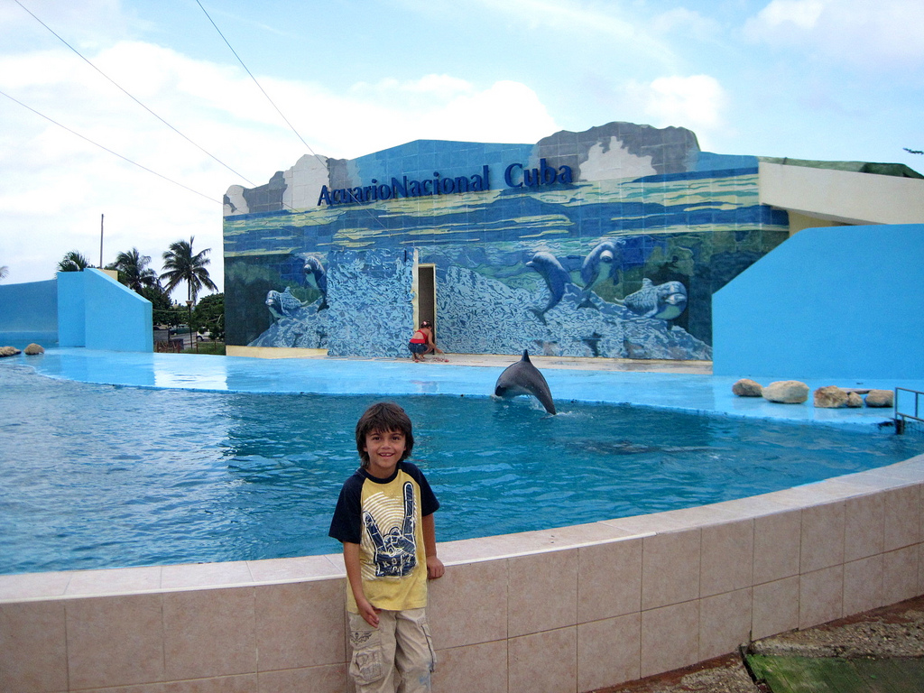 Ready to enjoy the National Aquarium of Havana