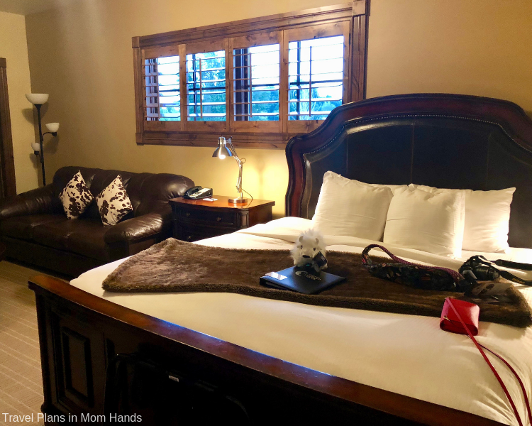 Jackson Hole and Grand Tetons best places to stay include the White Buffalo Club with its upscale rooms and accents including lots of buffaloes!