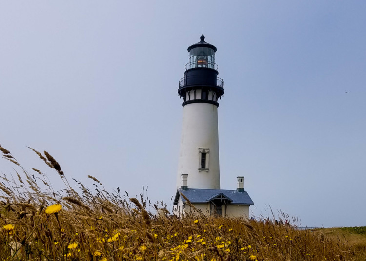 Yaquina Head State Park is a great day on the Oregon Coast with Kids