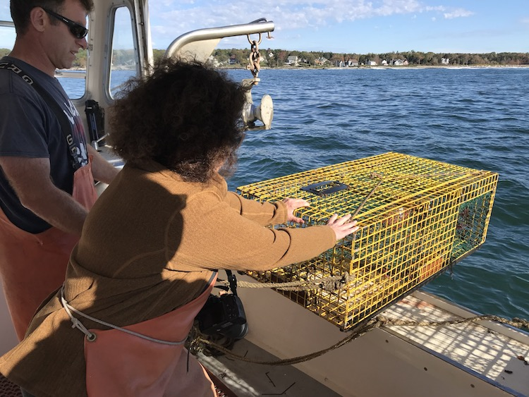 setting a lobster trap, one of the things to do in portland maine