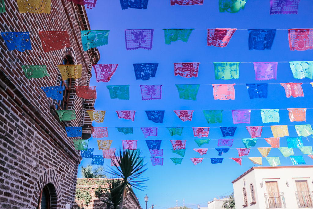 There's lots of info in this complete visitor's guide to La Paz Baja California Sur, to include recommendations on things to do - like where to go for a side trip