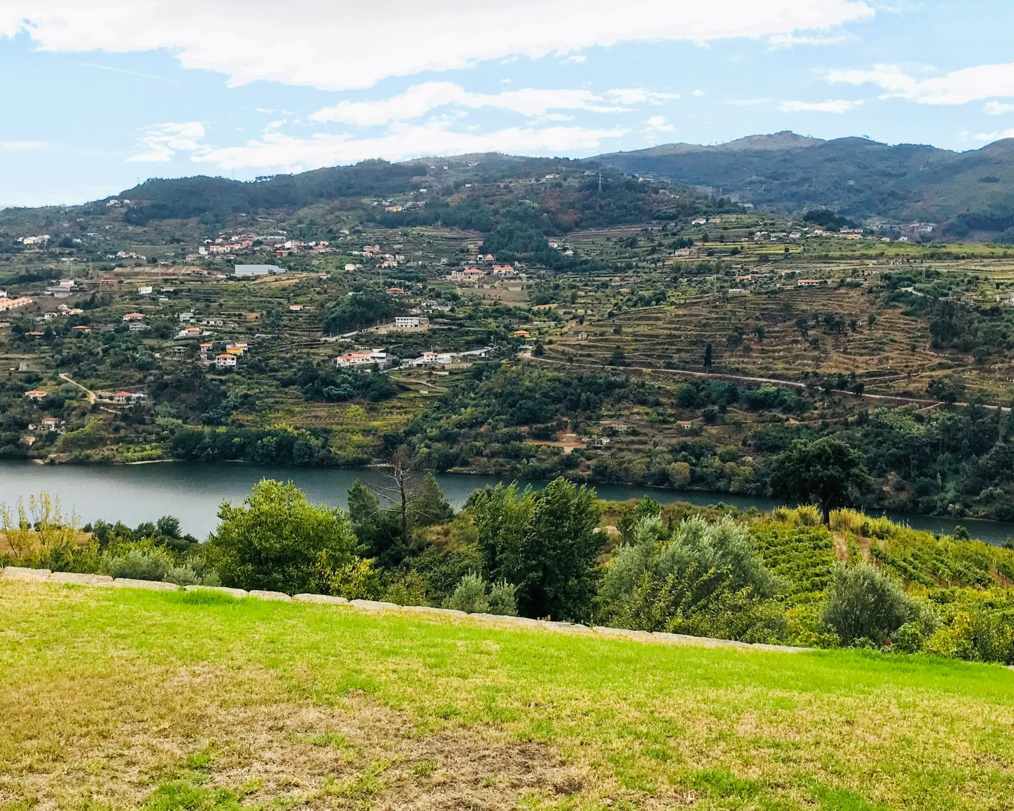 View of Douro River in Portugal's Douro Valley