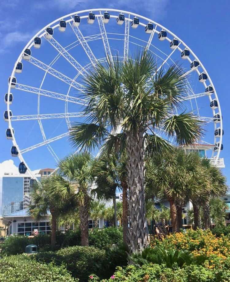Doing Myrtle Beach on a budget should still include a little splurge for the Myrtle Beach Skywheel.