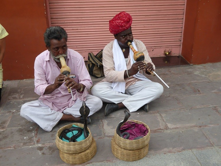 Snake charmers in Jaipur, India.