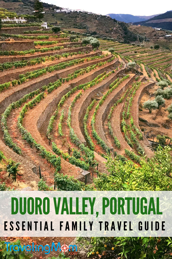 The terraced landscape of Portugal's Douro Valley is just one of the wonders of the region. It's a fantastic destination for family travel. #portugal #douro #valley #river