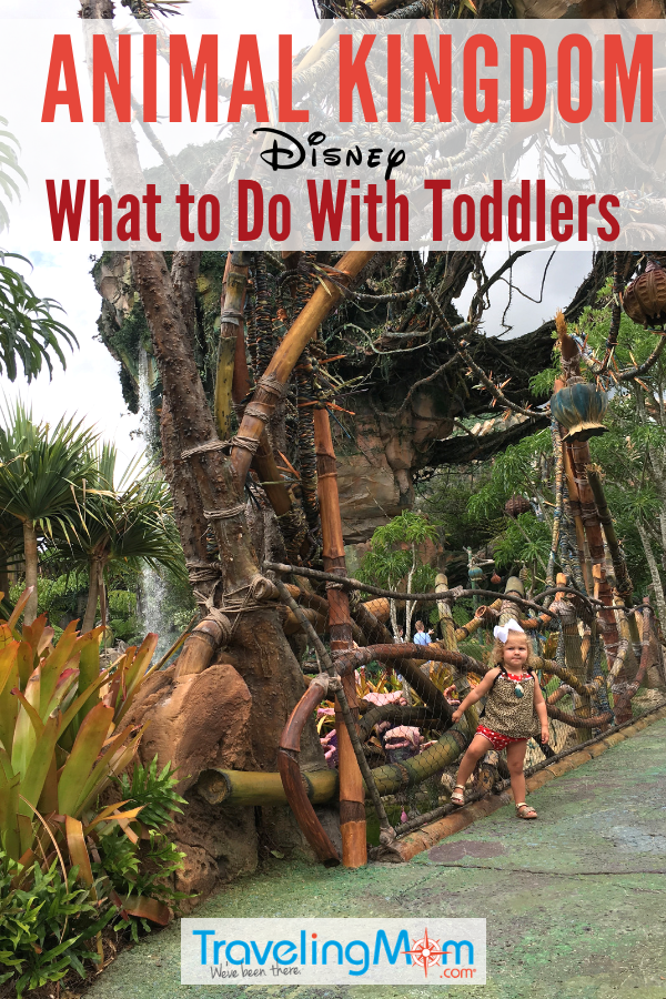 Taking toddlers to Animal Kingdom at Disney World? These are the best Walt Disney World parks and rides for little ones. #WaltDisneyWorld #AnimalKingdom #toddlers