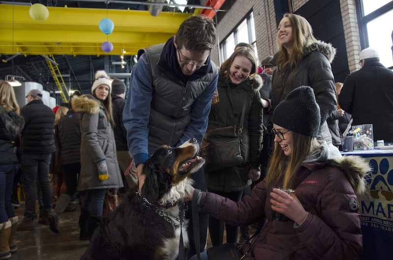 Looking for dog friendly restaurants in Minneapolis? Head to a brewery
