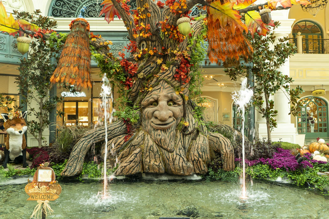 The Bellagio Conservatory and Botanical Gardens are a top choice for Free Things To Do In Las Vegas!