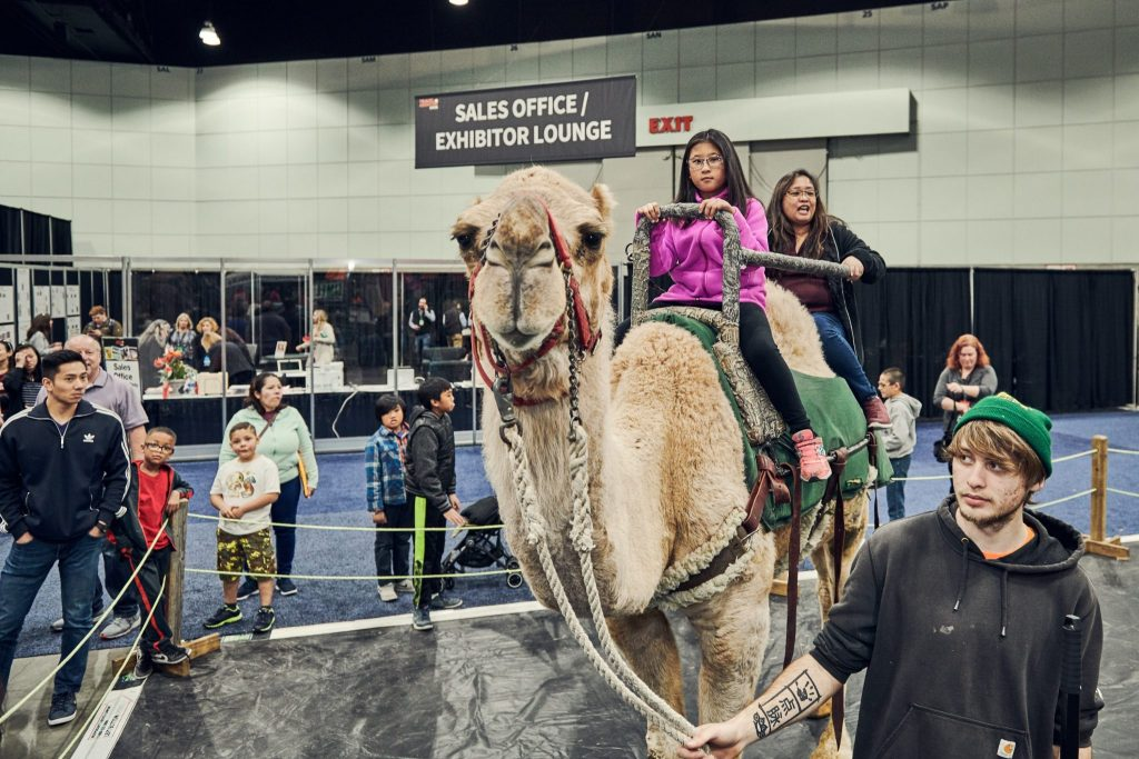 Families can get travel ideas at the nine Travel & Adventure Shows around the U.S. in 2019. Photo courtesy of the Travel & Adventure Show.