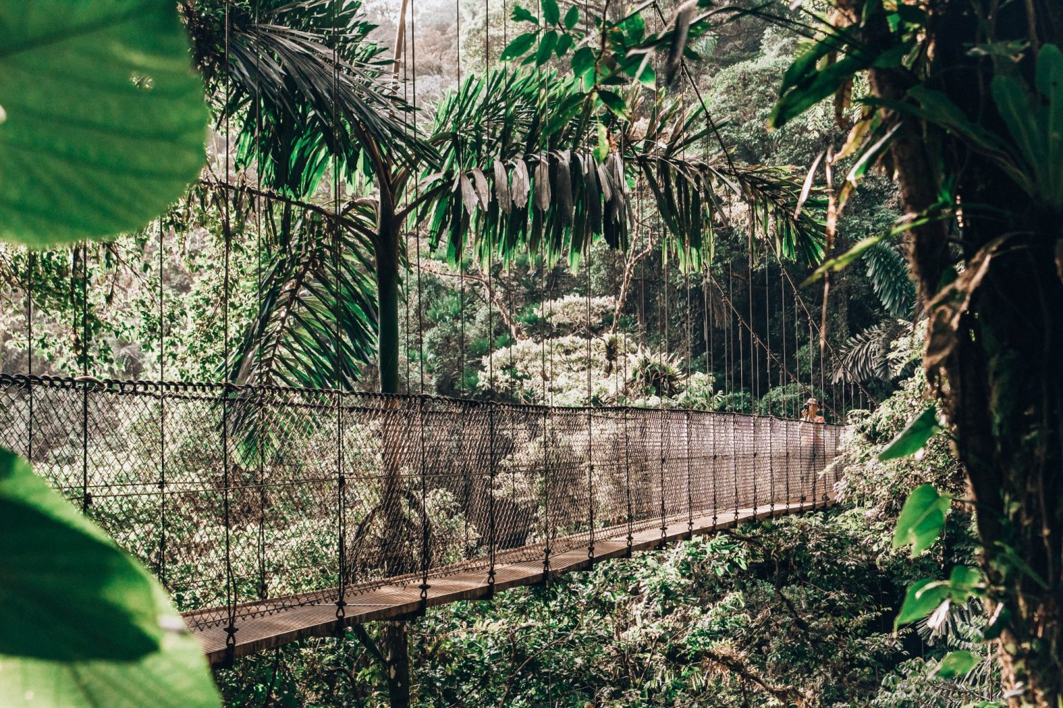 A visit to the Mistico Hanging Bridges is one of many things to do in Costa Rica with kids