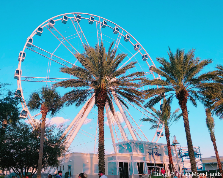 Panama City Things to Do include the new SkyWheel at Pier Park (plus shopping and other activities).